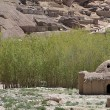 Bamiyan mud brick home