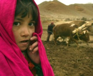 When I Was Six