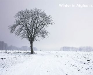 Summer Break in the Afghan Winter